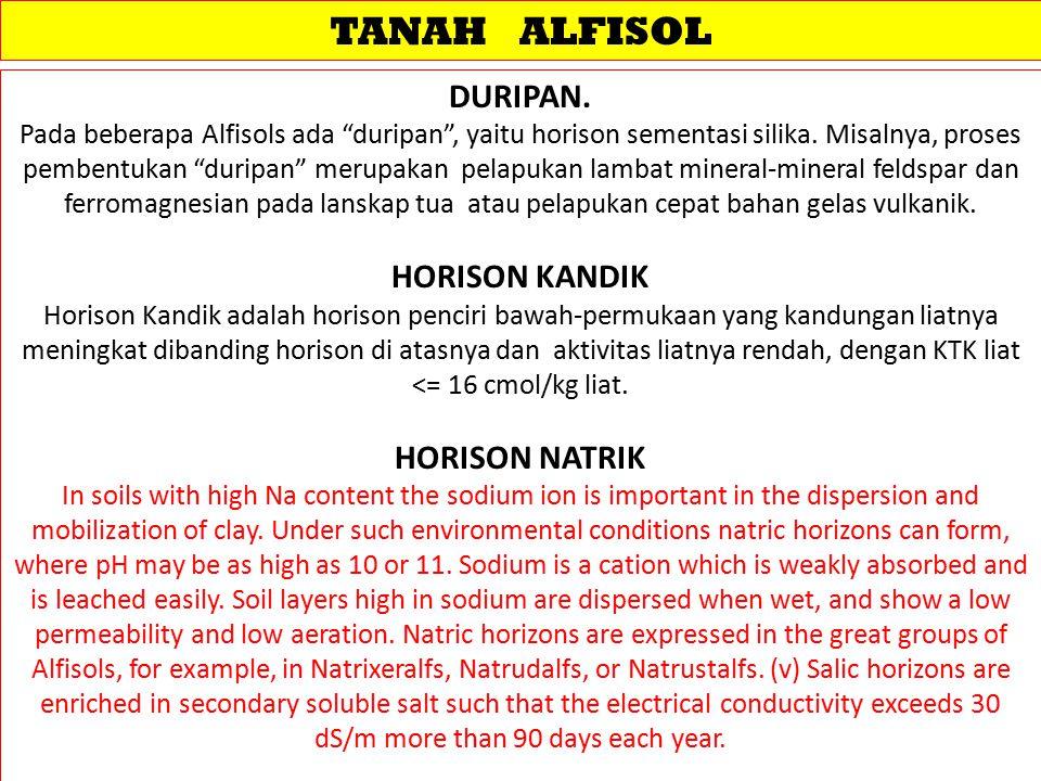"TANAH ALFISOL DURIPAN. Pada beberapa Alfisols ada ""duripan"", yaitu horison sementasi silika. Misalnya, proses pembentukan ""duripan"" merupakan pelapuka"