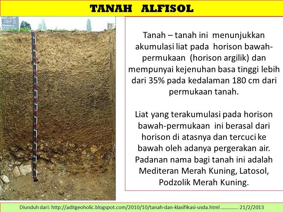TANAH ALFISOL Tanah – tanah ini menunjukkan akumulasi liat pada horison bawah- permukaan (horison argilik) dan mempunyai kejenuhan basa tinggi lebih d