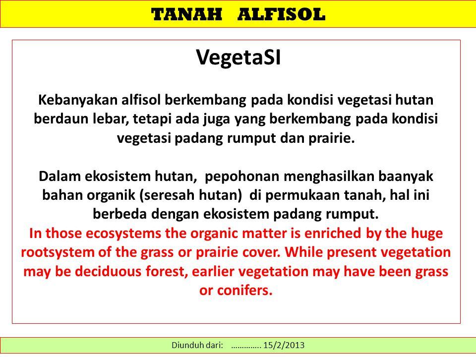 TANAH ALFISOL VegetaSI Kebanyakan alfisol berkembang pada kondisi vegetasi hutan berdaun lebar, tetapi ada juga yang berkembang pada kondisi vegetasi