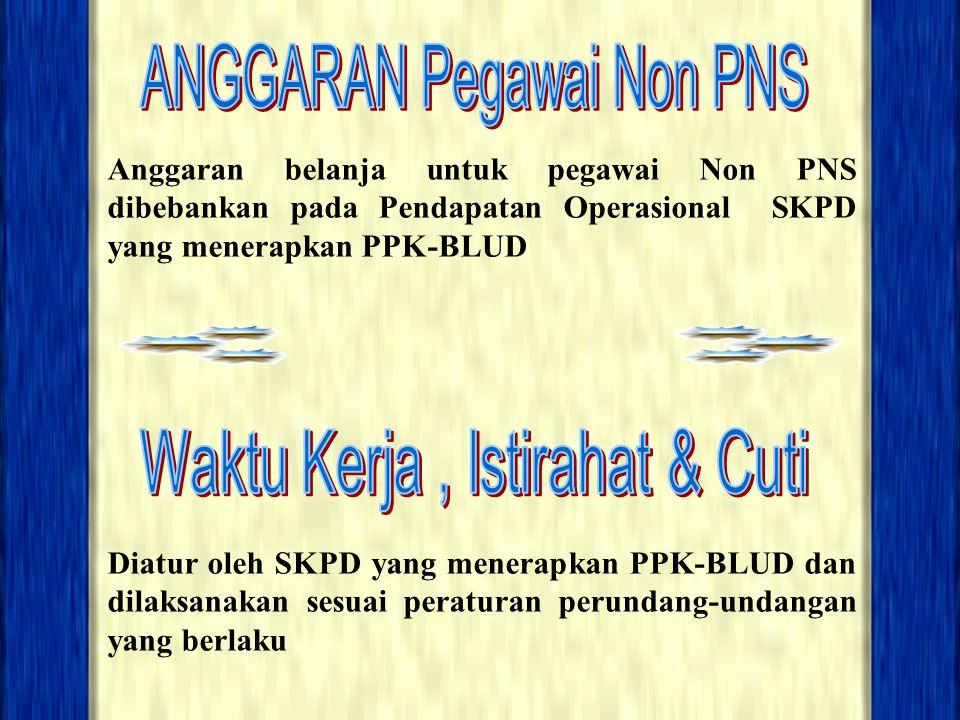 Anggaran belanja untuk pegawai Non PNS dibebankan pada Pendapatan Operasional SKPD yang menerapkan PPK-BLUD Diatur oleh SKPD yang menerapkan PPK-BLUD
