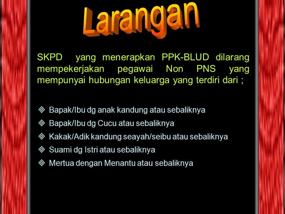 SKPD yang menerapkan PPK-BLUD dilarang mempekerjakan pegawai Non PNS yang mempunyai hubungan keluarga yang terdiri dari ; BBapak/Ibu dg anak kandung