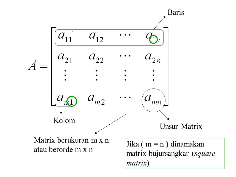 Baris Kolom Unsur Matrix Matrix berukuran m x n atau berorde m x n Jika ( m = n ) dinamakan matrix bujursangkar (square matrix)