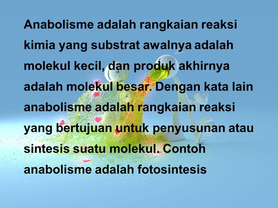 Anabolisme adalah rangkaian reaksi kimia yang substrat awalnya adalah molekul kecil, dan produk akhirnya adalah molekul besar.