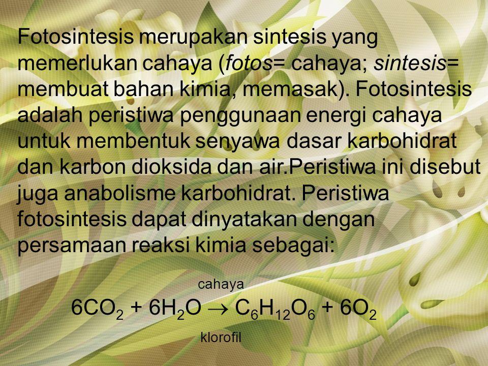 Fotosintesis merupakan sintesis yang memerlukan cahaya (fotos= cahaya; sintesis= membuat bahan kimia, memasak).