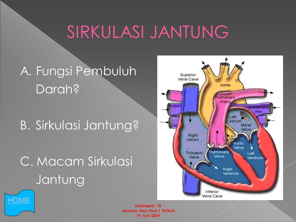 SIRKULASI JANTUNG A.Fungsi Pembuluh Darah. B. Sirkulasi Jantung.