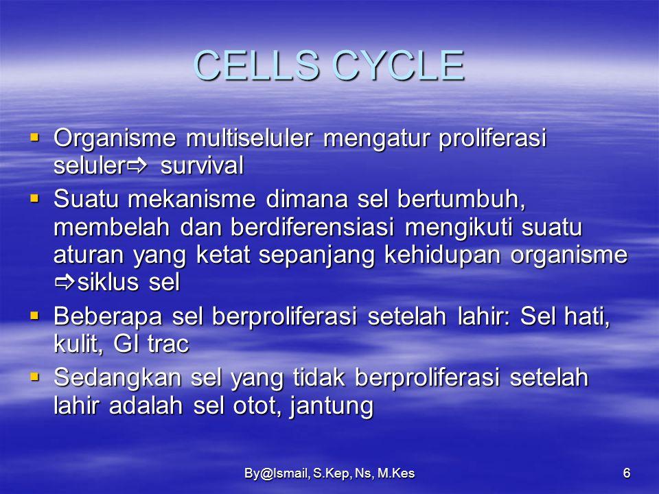 By@Ismail, S.Kep, Ns, M.Kes6 CELLS CYCLE  Organisme multiseluler mengatur proliferasi seluler  survival  Suatu mekanisme dimana sel bertumbuh, membelah dan berdiferensiasi mengikuti suatu aturan yang ketat sepanjang kehidupan organisme  siklus sel  Beberapa sel berproliferasi setelah lahir: Sel hati, kulit, GI trac  Sedangkan sel yang tidak berproliferasi setelah lahir adalah sel otot, jantung