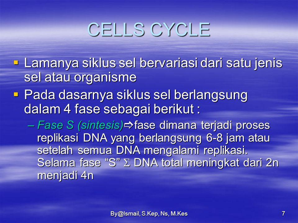 By@Ismail, S.Kep, Ns, M.Kes7 CELLS CYCLE  Lamanya siklus sel bervariasi dari satu jenis sel atau organisme  Pada dasarnya siklus sel berlangsung dalam 4 fase sebagai berikut : –Fase S (sintesis)  fase dimana terjadi proses replikasi DNA yang berlangsung 6-8 jam atau setelah semua DNA mengalami replikasi.