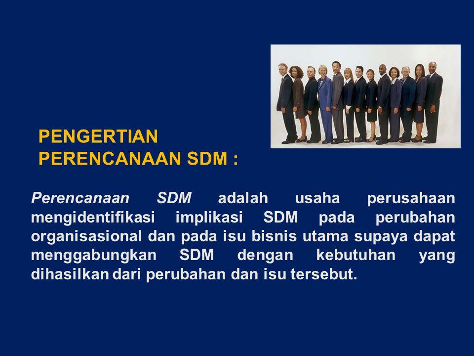 Perencanaan SDM adalah usaha perusahaan mengidentifikasi implikasi SDM pada perubahan organisasional dan pada isu bisnis utama supaya dapat menggabungkan SDM dengan kebutuhan yang dihasilkan dari perubahan dan isu tersebut.