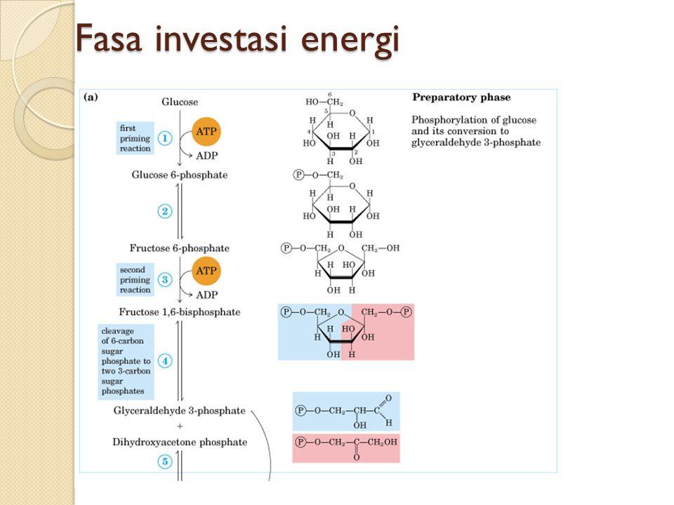 Fasa investasi energi