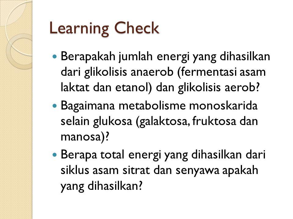 Learning Check Berapakah jumlah energi yang dihasilkan dari glikolisis anaerob (fermentasi asam laktat dan etanol) dan glikolisis aerob? Bagaimana met