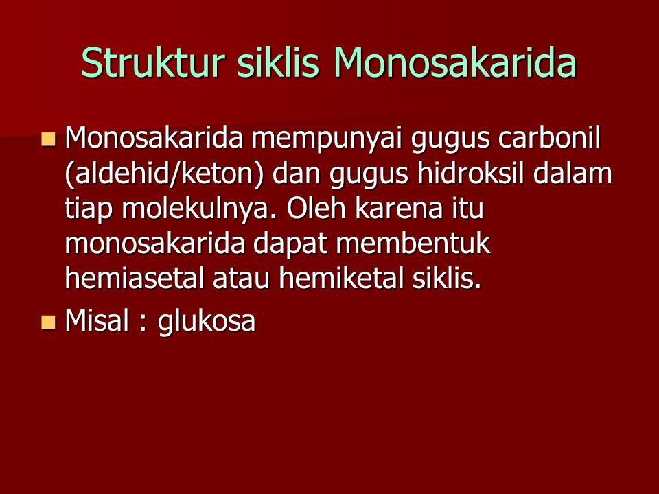 Struktur siklis Monosakarida Monosakarida mempunyai gugus carbonil (aldehid/keton) dan gugus hidroksil dalam tiap molekulnya. Oleh karena itu monosaka