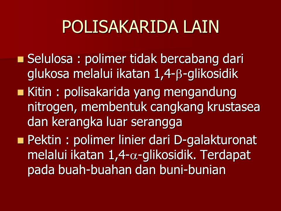 POLISAKARIDA LAIN Selulosa : polimer tidak bercabang dari glukosa melalui ikatan 1,4-  -glikosidik Selulosa : polimer tidak bercabang dari glukosa me