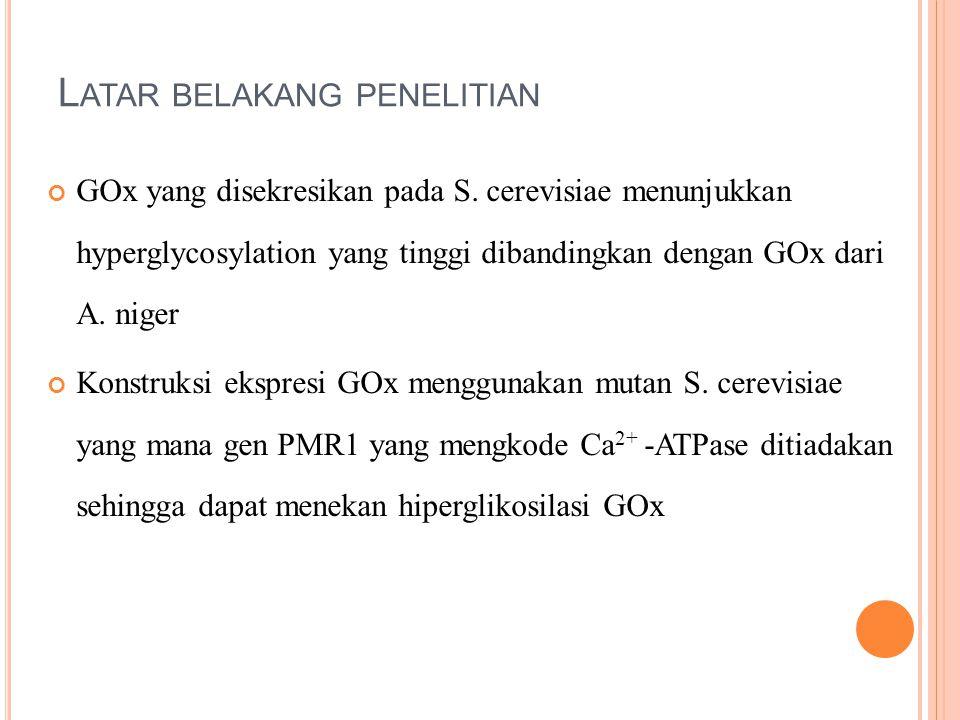 L ATAR BELAKANG PENELITIAN GOx yang disekresikan pada S. cerevisiae menunjukkan hyperglycosylation yang tinggi dibandingkan dengan GOx dari A. niger K