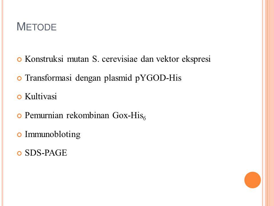 M ETODE Konstruksi mutan S. cerevisiae dan vektor ekspresi Transformasi dengan plasmid pYGOD-His Kultivasi Pemurnian rekombinan Gox-His 6 Immunoblotin