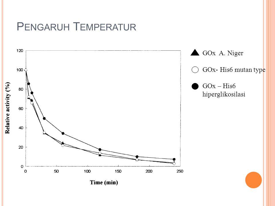 P ENGARUH T EMPERATUR GOx A. Niger GOx- His6 mutan type GOx – His6 hiperglikosilasi