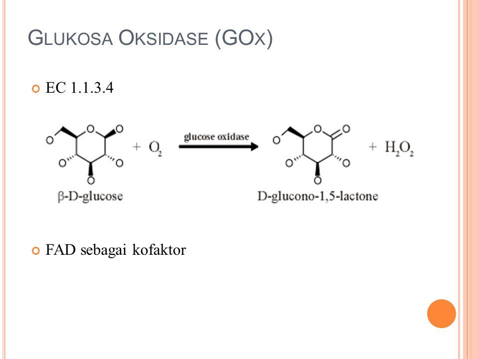 M EKANISME +O 2 -H 2 O 2 +D-Glucose -D-Gluconolactone