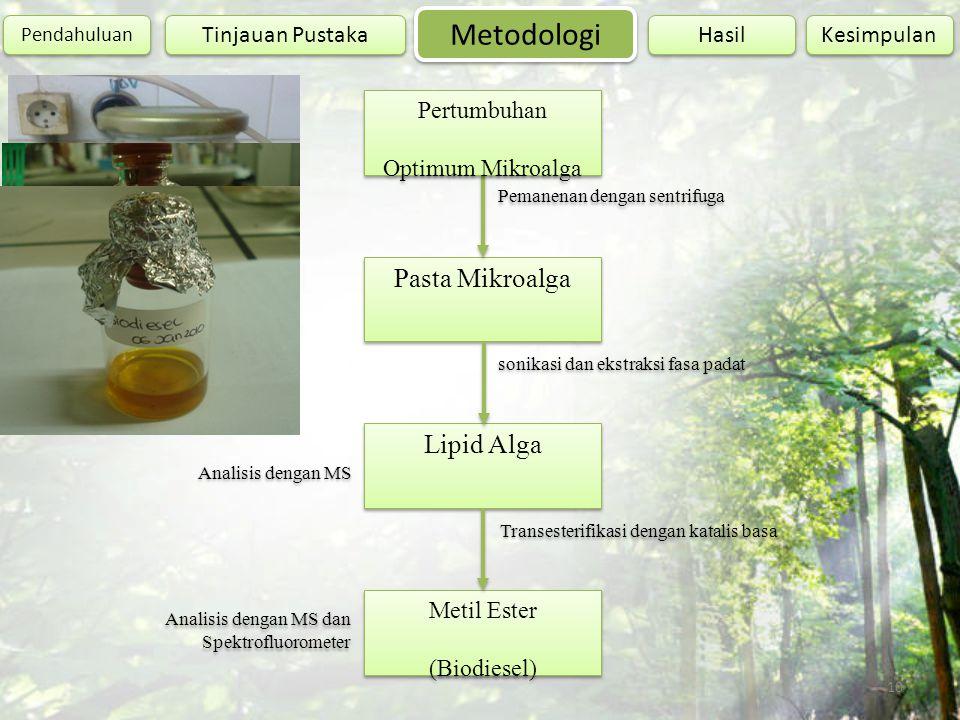 10 Pasta Mikroalga Analisis dengan MS dan Spektrofluorometer Metil Ester (Biodiesel) Lipid Alga Pemanenan dengan sentrifuga Pertumbuhan Optimum Mikroa