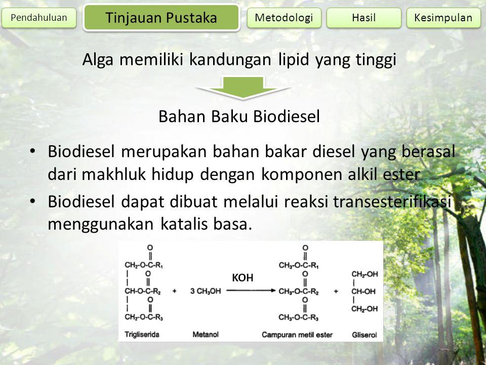 8 Tinjauan Pustaka Pendahuluan Hasil Kesimpulan Metodologi Alga memiliki kandungan lipid yang tinggi Bahan Baku Biodiesel Biodiesel merupakan bahan ba