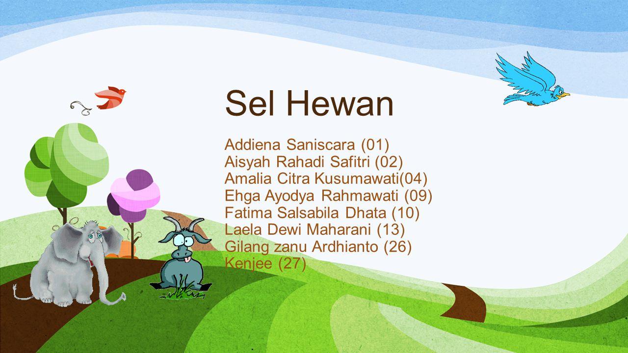 Sel Hewan Addiena Saniscara (01) Aisyah Rahadi Safitri (02) Amalia Citra Kusumawati(04) Ehga Ayodya Rahmawati (09) Fatima Salsabila Dhata (10) Laela D