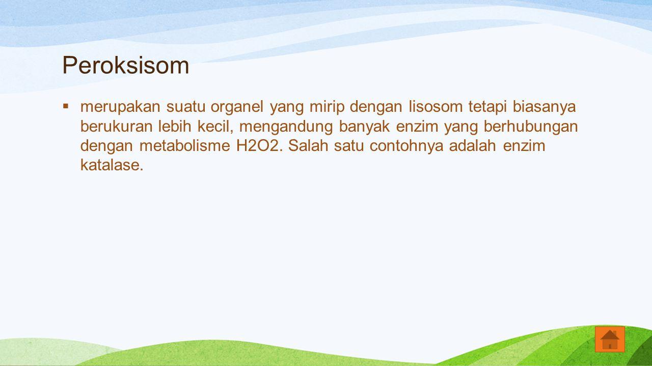 Peroksisom  merupakan suatu organel yang mirip dengan lisosom tetapi biasanya berukuran lebih kecil, mengandung banyak enzim yang berhubungan dengan