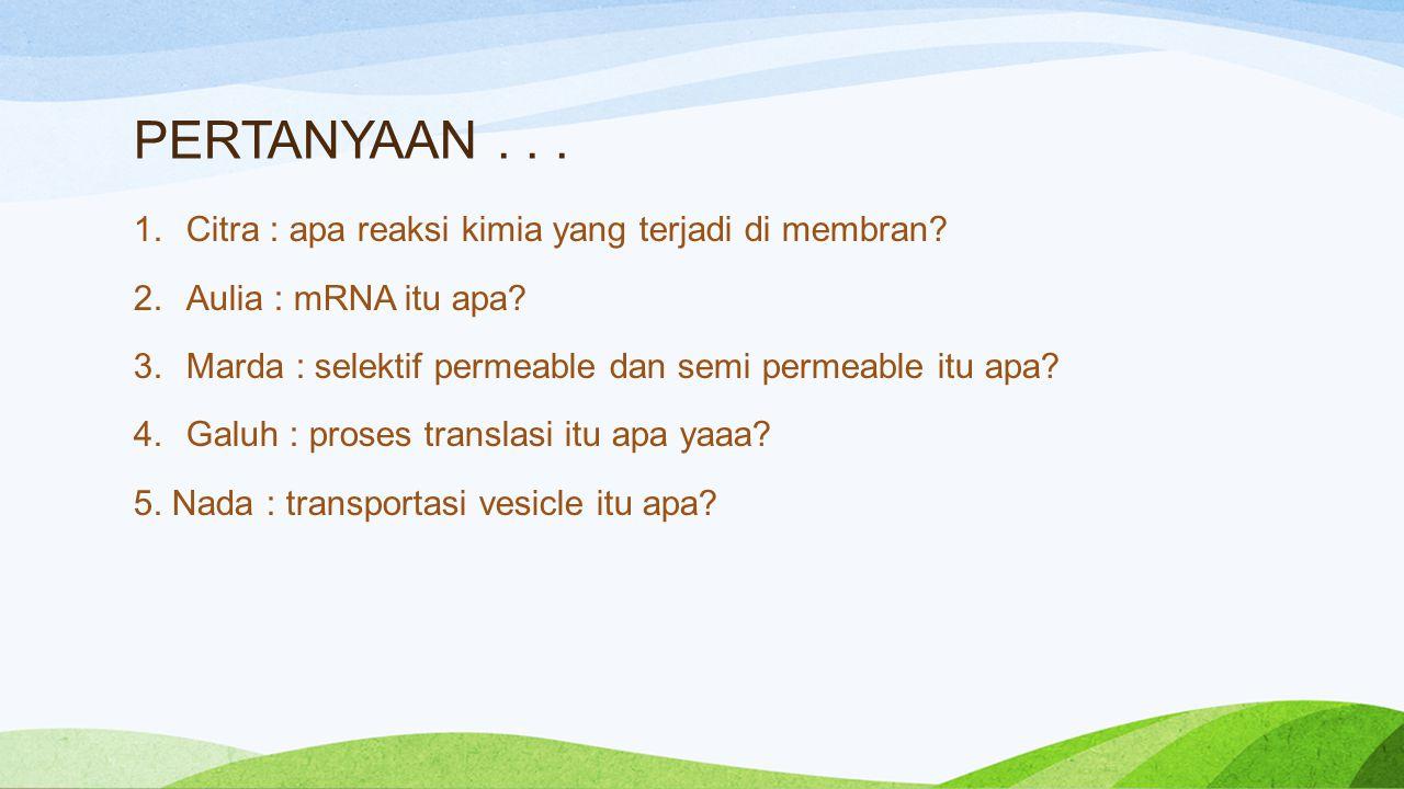 PERTANYAAN... 1.Citra : apa reaksi kimia yang terjadi di membran? 2.Aulia : mRNA itu apa? 3.Marda : selektif permeable dan semi permeable itu apa? 4.G