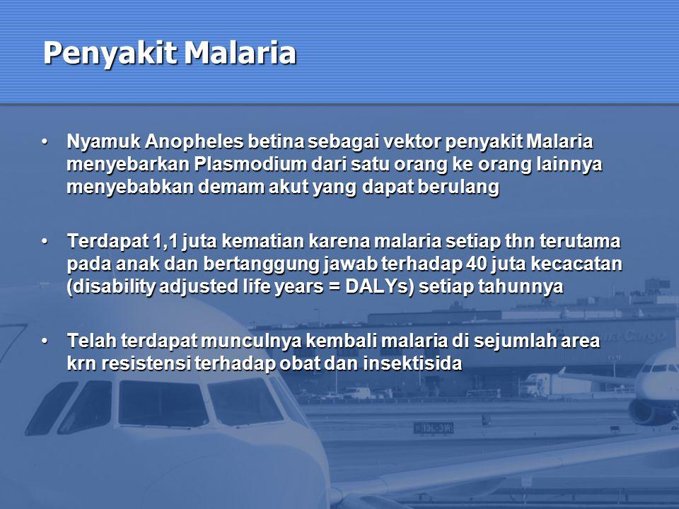 Penyakit Malaria Nyamuk Anopheles betina sebagai vektor penyakit Malaria menyebarkan Plasmodium dari satu orang ke orang lainnya menyebabkan demam aku