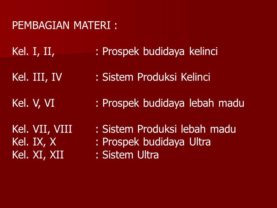 PEMBAGIAN MATERI : Kel. I, II, : Prospek budidaya kelinci Kel. III, IV : Sistem Produksi Kelinci Kel. V, VI: Prospek budidaya lebah madu Kel. VII, VII