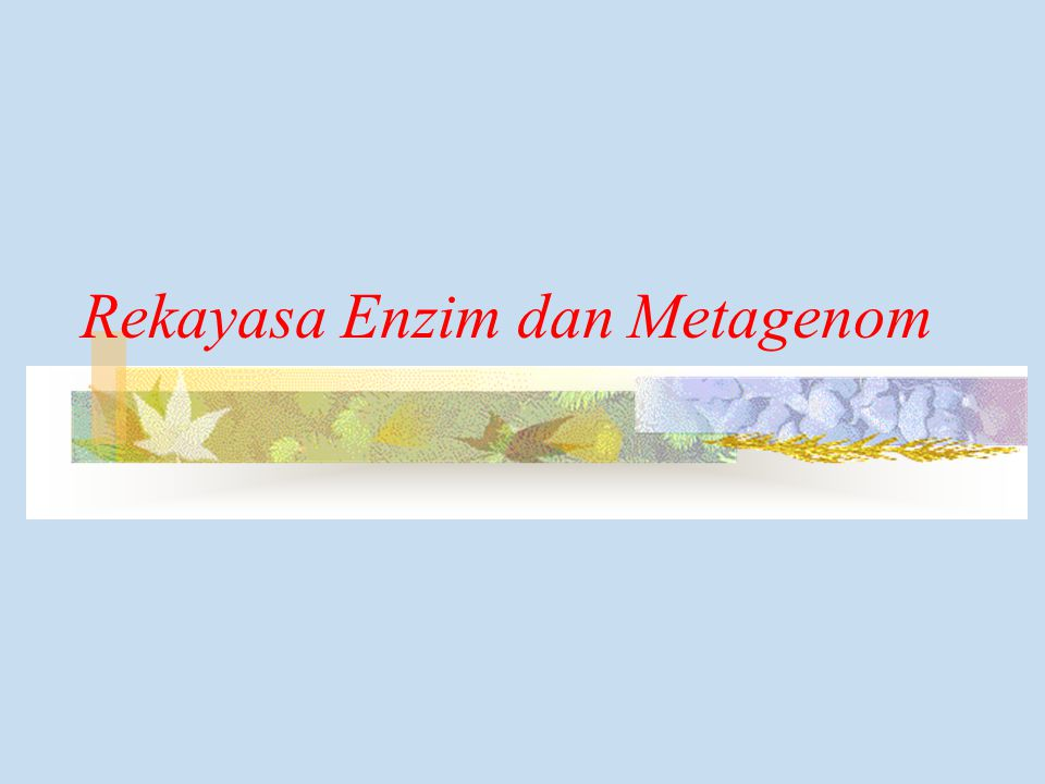 Rekayasa Enzim dan Metagenom