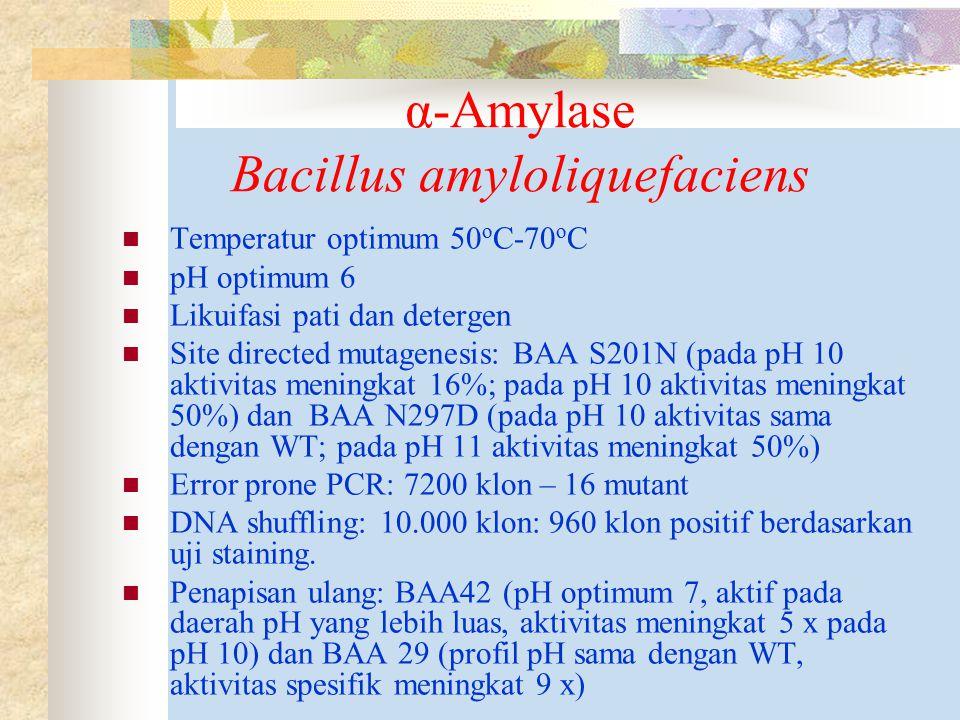 α-Amylase Bacillus amyloliquefaciens Temperatur optimum 50 o C-70 o C pH optimum 6 Likuifasi pati dan detergen Site directed mutagenesis: BAA S201N (pada pH 10 aktivitas meningkat 16%; pada pH 10 aktivitas meningkat 50%) dan BAA N297D (pada pH 10 aktivitas sama dengan WT; pada pH 11 aktivitas meningkat 50%) Error prone PCR: 7200 klon – 16 mutant DNA shuffling: 10.000 klon: 960 klon positif berdasarkan uji staining.