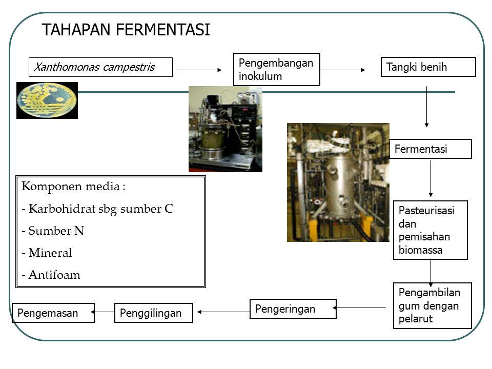 TAHAPAN FERMENTASI Xanthomonas campestris Pengembangan inokulum Tangki benih Fermentasi Pasteurisasi dan pemisahan biomassa Pengambilan gum dengan pel
