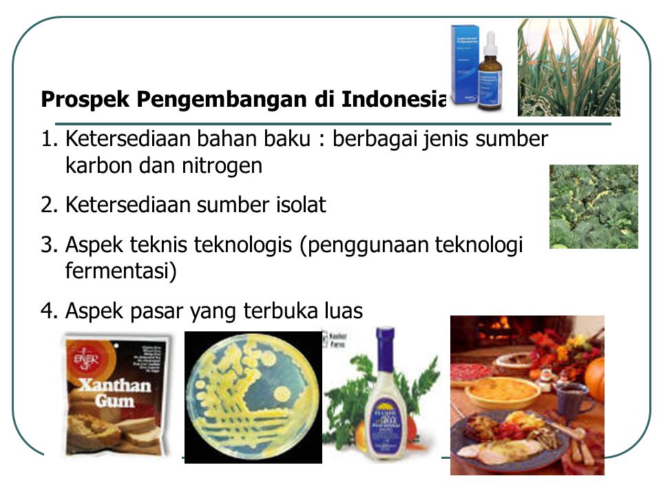 Prospek Pengembangan di Indonesia : 1.Ketersediaan bahan baku : berbagai jenis sumber karbon dan nitrogen 2.Ketersediaan sumber isolat 3.Aspek teknis