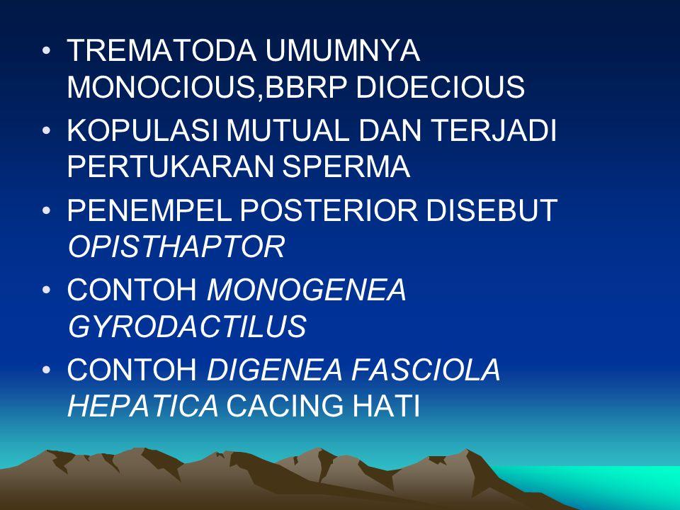 TREMATODA UMUMNYA MONOCIOUS,BBRP DIOECIOUS KOPULASI MUTUAL DAN TERJADI PERTUKARAN SPERMA PENEMPEL POSTERIOR DISEBUT OPISTHAPTOR CONTOH MONOGENEA GYROD