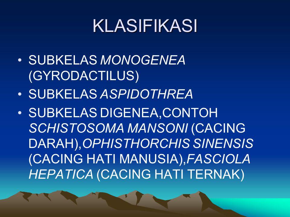 KLASIFIKASI SUBKELAS MONOGENEA (GYRODACTILUS) SUBKELAS ASPIDOTHREA SUBKELAS DIGENEA,CONTOH SCHISTOSOMA MANSONI (CACING DARAH),OPHISTHORCHIS SINENSIS (