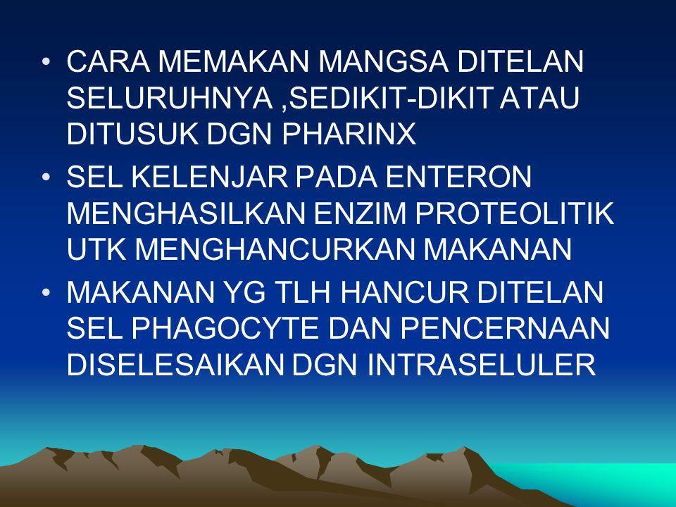 KLASIFIKASI SUBKELAS MONOGENEA (GYRODACTILUS) SUBKELAS ASPIDOTHREA SUBKELAS DIGENEA,CONTOH SCHISTOSOMA MANSONI (CACING DARAH),OPHISTHORCHIS SINENSIS (CACING HATI MANUSIA),FASCIOLA HEPATICA (CACING HATI TERNAK)
