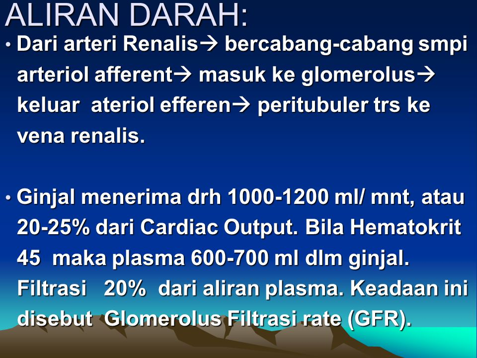 ALIRAN DARAH: Dari arteri Renalis  bercabang-cabang smpi Dari arteri Renalis  bercabang-cabang smpi arteriol afferent  masuk ke glomerolus  arteri