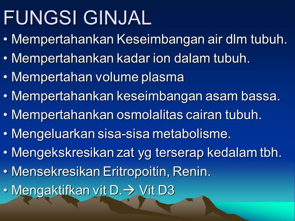 FUNGSI GINJAL Mempertahankan Keseimbangan air dlm tubuh. Mempertahankan Keseimbangan air dlm tubuh. Mempertahankan kadar ion dalam tubuh. Mempertahank