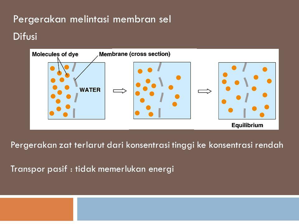 Transpor seluler Passive transport – tidak memerlukan energi untuk memindahkan partikel. Active transport – memerlukan energi untuk mentranspor partik