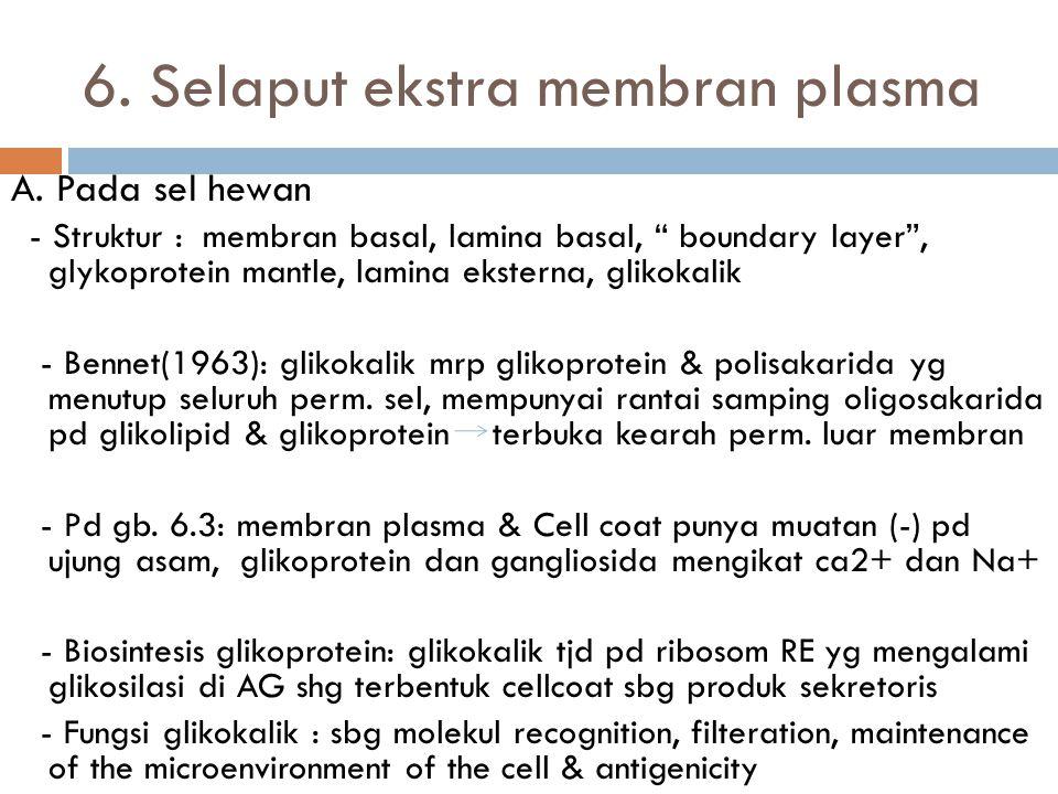5.Fisiologi Membran plasma  M. Plasma berperan penting sbg pembatas tipis yang memisahkan internal dan eksternal. Sehingga tdp fungsi fisiologis sbg: