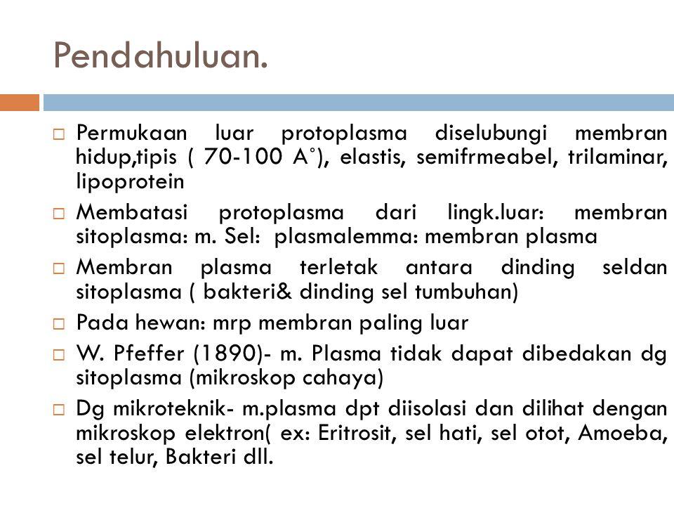 5.Fisiologi Membran plasma  M.