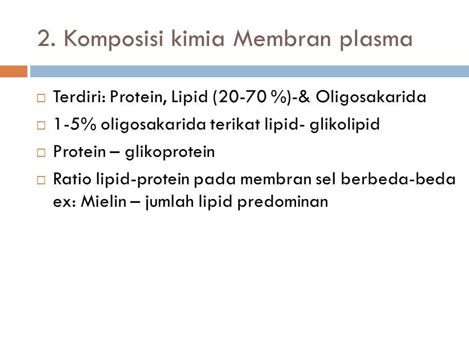 Membran sel merupakan lapisan ganda (bilayer) -terdiri dari lipid dan protein -model: mosaik fluida Phosphate Fatty acid Hydrophobic Phosphate group Hydrophilic Tersusun : bilayer