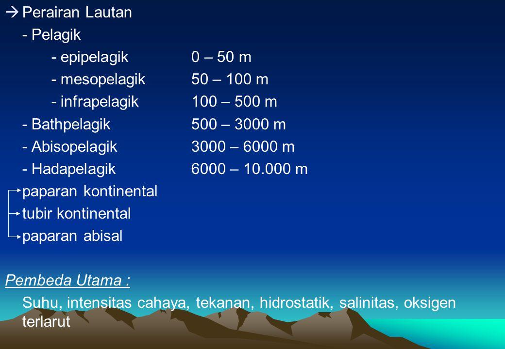  Perairan Lautan - Pelagik - epipelagik0 – 50 m - mesopelagik50 – 100 m - infrapelagik100 – 500 m - Bathpelagik500 – 3000 m - Abisopelagik3000 – 6000