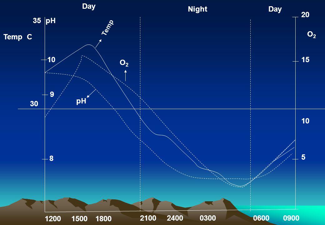 35pH Day NightDay Temp O2O2 pH 10 9 8 30 120015001800 21002400030006000900 20 15 10 5 O2O2 Temp C