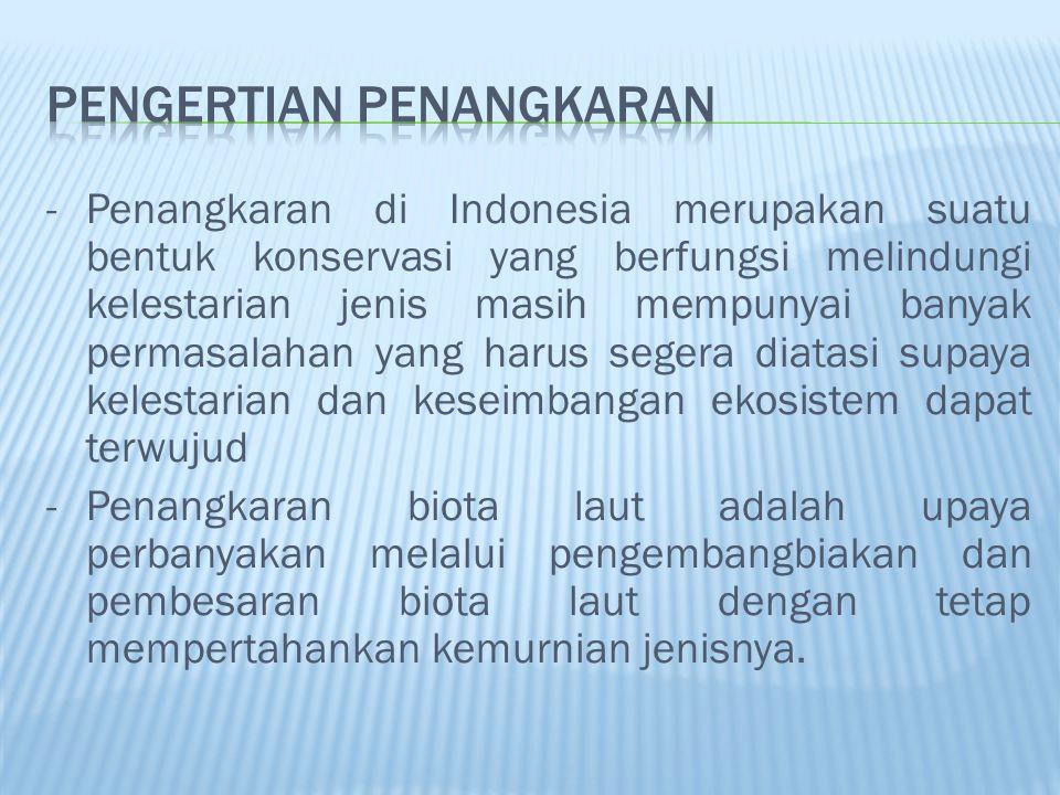 -Penangkaran di Indonesia merupakan suatu bentuk konservasi yang berfungsi melindungi kelestarian jenis masih mempunyai banyak permasalahan yang harus segera diatasi supaya kelestarian dan keseimbangan ekosistem dapat terwujud -Penangkaran biota laut adalah upaya perbanyakan melalui pengembangbiakan dan pembesaran biota laut dengan tetap mempertahankan kemurnian jenisnya.