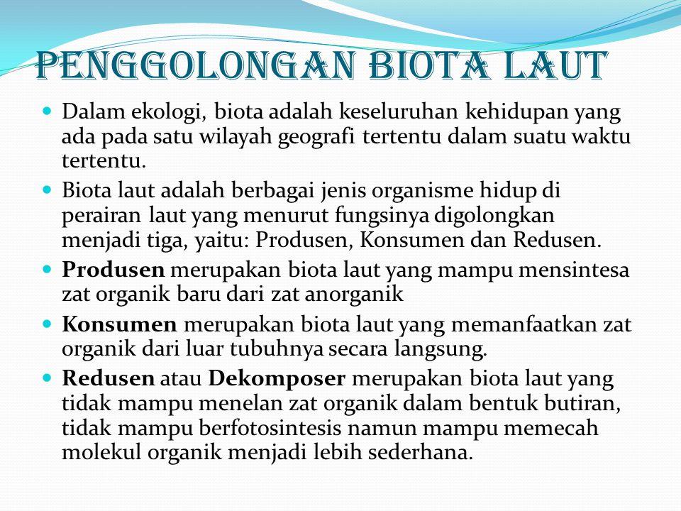 Penggolongan Biota Laut Dalam ekologi, biota adalah keseluruhan kehidupan yang ada pada satu wilayah geografi tertentu dalam suatu waktu tertentu. Bio