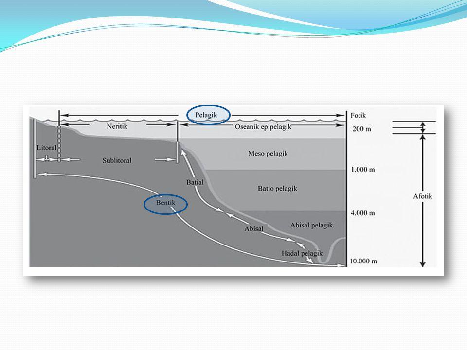Zona kolom air, atau Zona Pelagik adalah bagian perairan dimana terdapat massa air, sedangkan Zona dasar perairan, atau disebut juga Zona Bentik yang merupakan dasar / platform dari perairan itu sendiri.