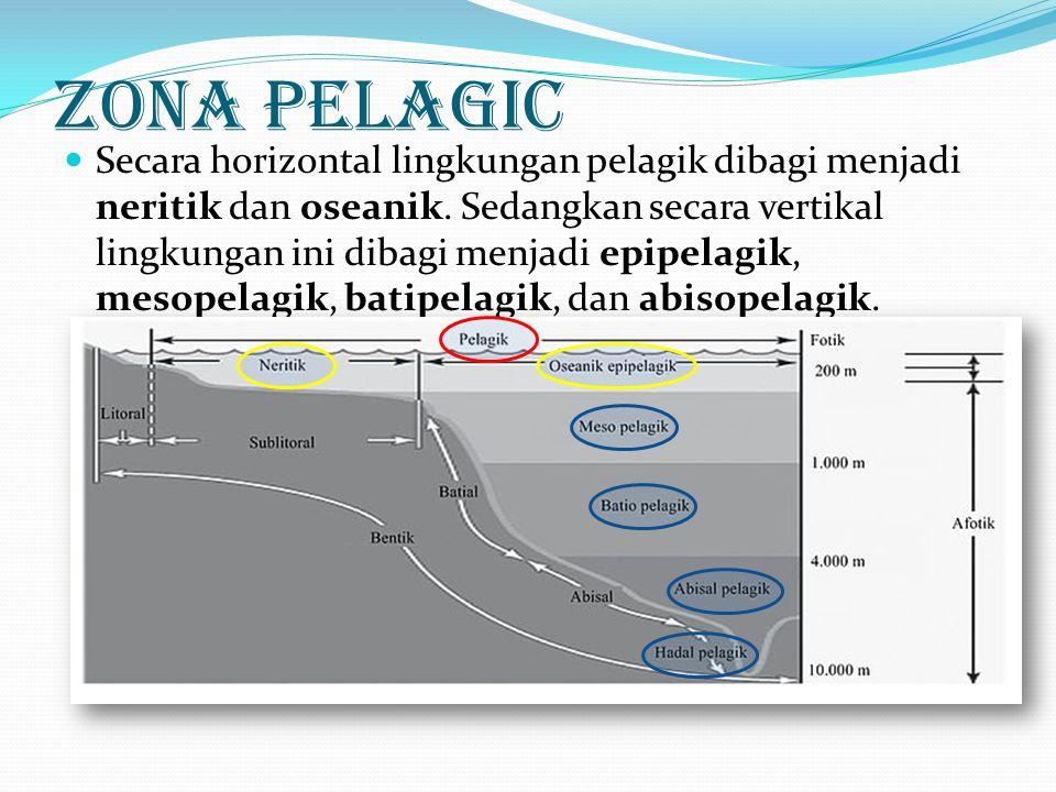 Secara horizontal lingkungan pelagik dibagi menjadi neritik dan oseanik. Sedangkan secara vertikal lingkungan ini dibagi menjadi epipelagik, mesopelag