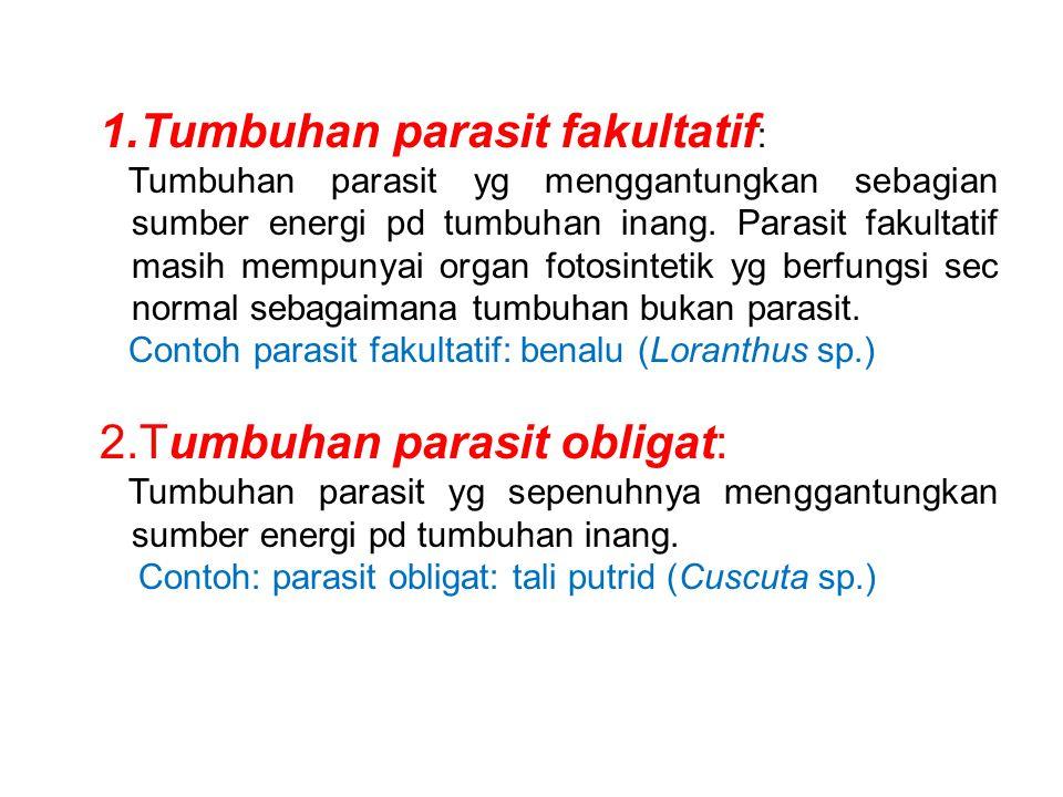 1.Tumbuhan parasit fakultatif : Tumbuhan parasit yg menggantungkan sebagian sumber energi pd tumbuhan inang. Parasit fakultatif masih mempunyai organ