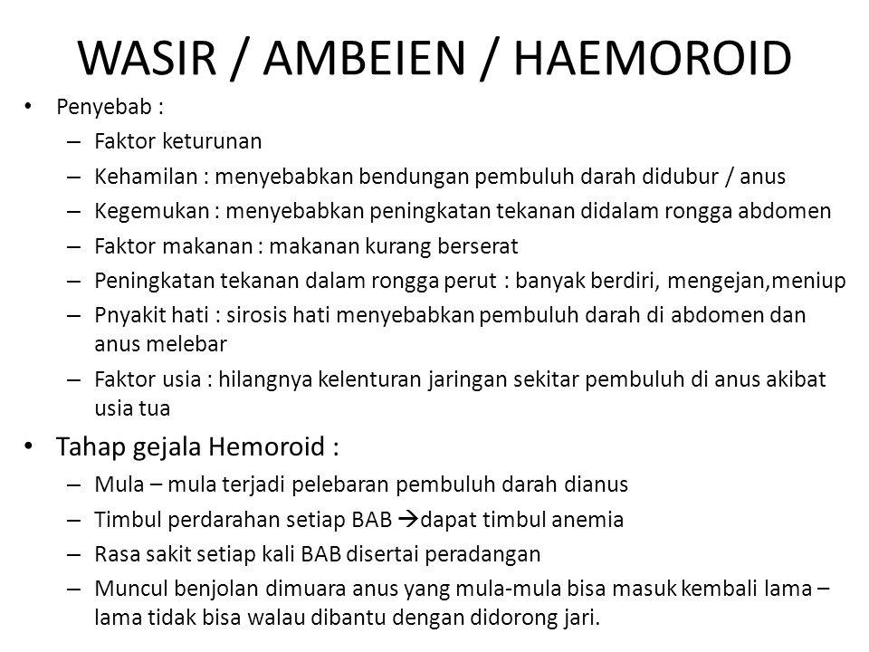 WASIR / AMBEIEN / HAEMOROID Penyebab : – Faktor keturunan – Kehamilan : menyebabkan bendungan pembuluh darah didubur / anus – Kegemukan : menyebabkan