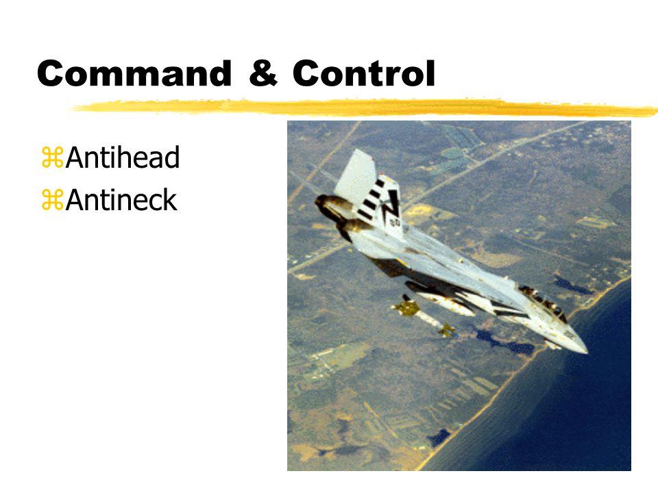 Information Warfare: Pertempuran Fisk  Command-and-control (C2W)  Intelligence-based warfare (IBW)  Electronic warfare (EW)