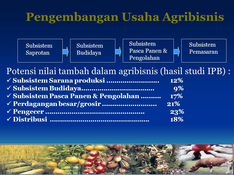 Pengembangan Usaha Agribisnis Subsistem Saprotan Subsistem Budidaya Subsistem Pasca Panen & Pengolahan Subsistem Pemasaran Potensi nilai tambah dalam